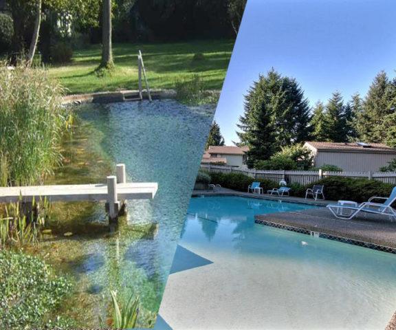 пруд или бассейн